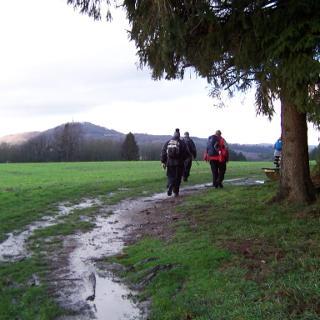 Blick vom Espenwald zum Schaumberg