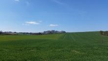 Panoramarundweg Augustusburg-Hohenfichte-Augustusburg