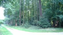 Wanderung Parchim Rund um den Sonnenberg