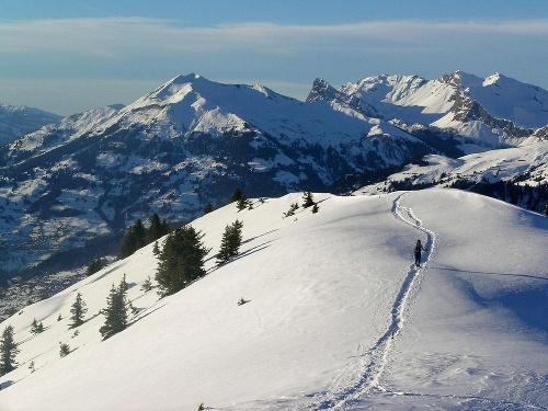 Rätikon Panoramatour Pany - Stelserberg