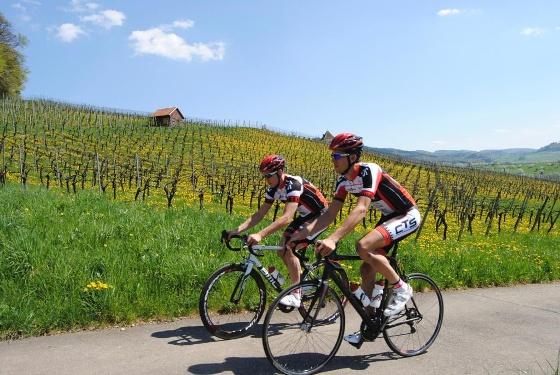 Rennrad Tour Elsass durch Neuf-Brisach von Badenweiler aus