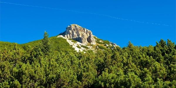 Auf dem Weg zum Gipfel des Weißhorns