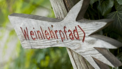 Weinlehrpfad in Kurtatsch