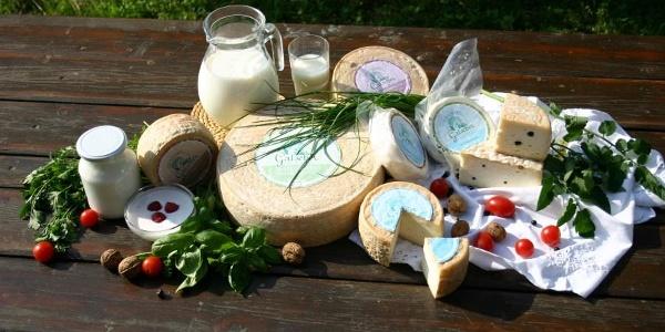 cheese farm Gatscher