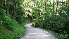 Familienwanderung Oberolang – Welsberg