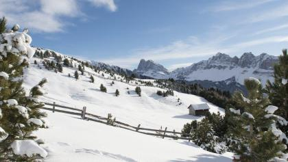 From Valcroce/Kreuztal to the Rossalm Alpine pasture