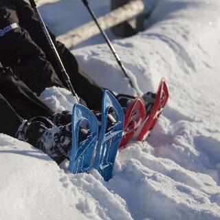 Schneeschuhwanderung zur Lyfialm