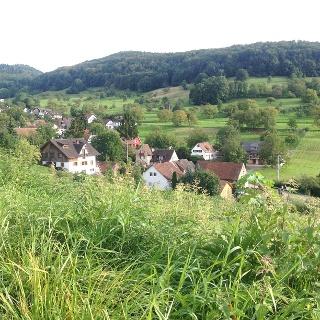 Rund um Badenweiler