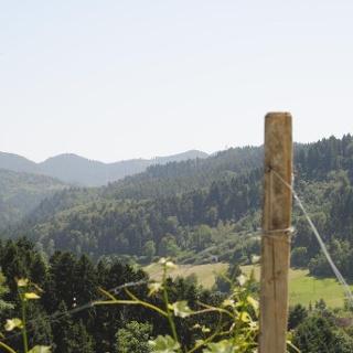 Blick auf Sulzburg vom Castellberg