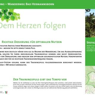 VitalWanderWelt Wanderweg Bad Hermannsborn - Dem Herzen folgen