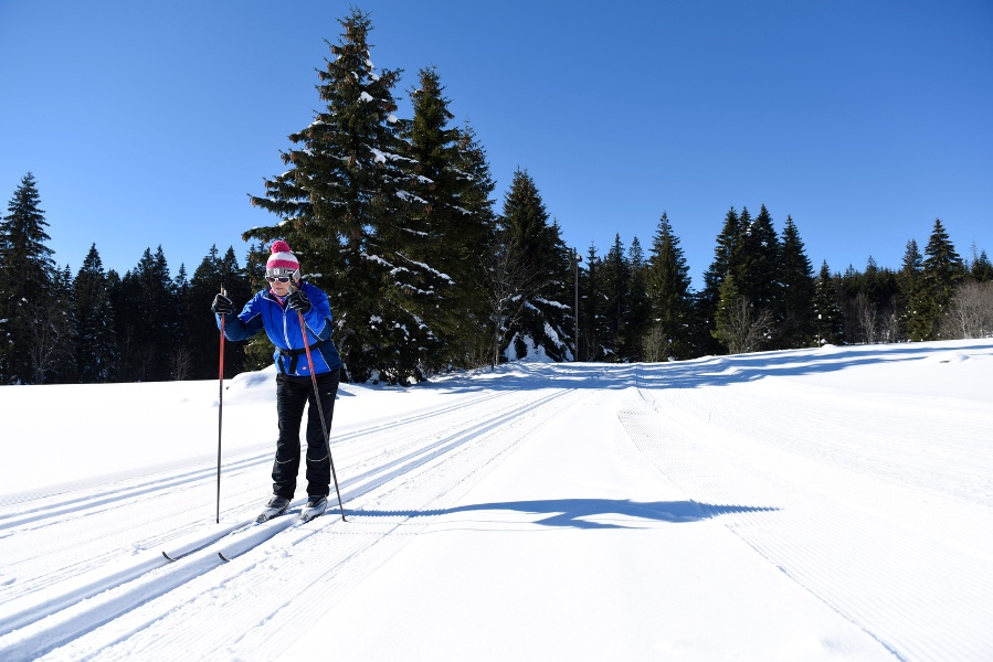 Furtwangen - Fernskiwanderweg, Etappe Martinskapelle - Kalte Herberge