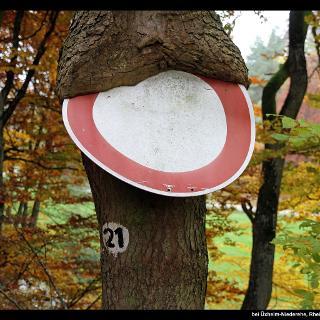 Schild bei Üxheim-Niederehe