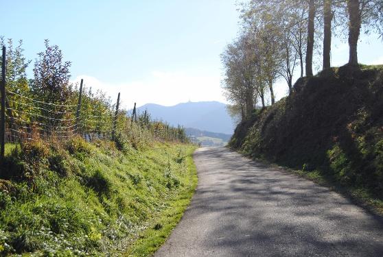 Radtour nach Neuenburg zum Rhein und über Hügelheim durch die Reben von Badenweiler aus