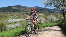 MTB Tour durch die Wälder um Badenweiler und Sulzburg