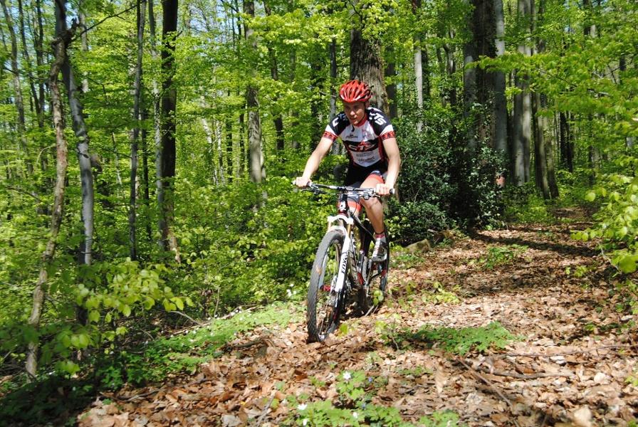 MTB Tour über Sulzburg, Münstertal, Kälbelescheuer und Hoch Blauen von Badenweiler aus