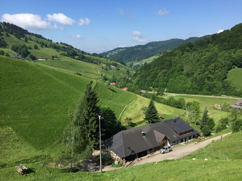 Das Wiedener Eck von Münstertal aus