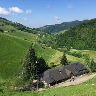 Ausblick Richtung Münstertal