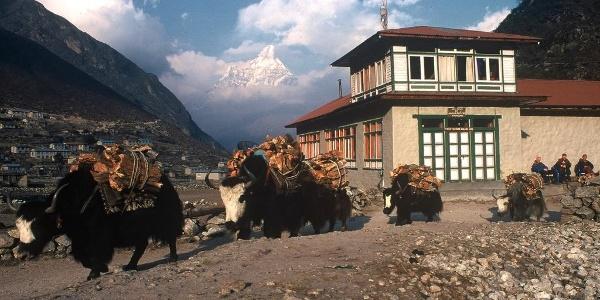 Ama Dablan View Lodge, Khumjung 3790m