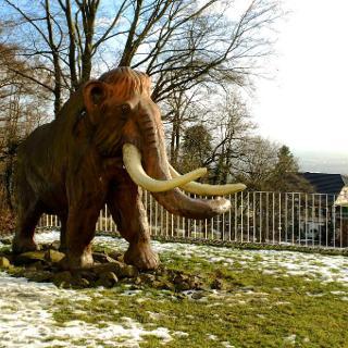 Mammut vor dem Eiszeitmuseum Monrepos