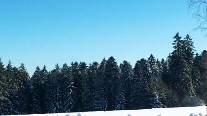 Winterlandschaft Loßburg