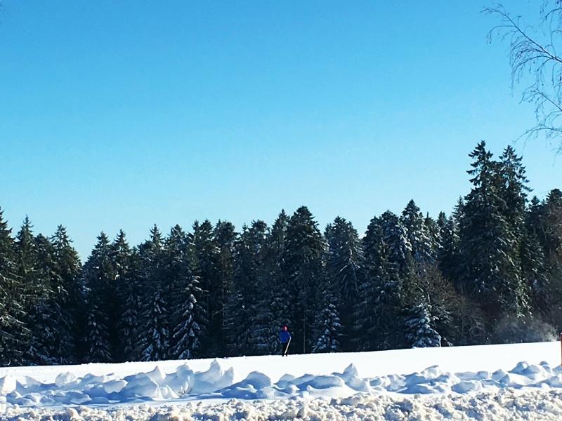 Loßburg Schneeschuhwanderung Tour 4