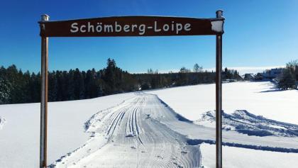 Loßburg Schömbergspur  - Start