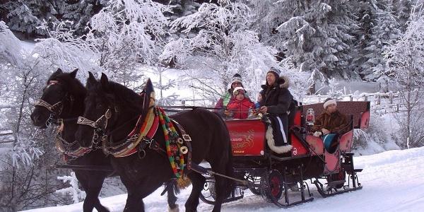 Horse Drawn Sleigh Rides Horse Ranch Outdooractive Com