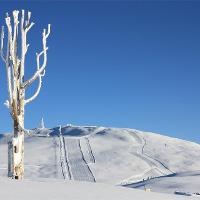 Schneeschuhwandern am Rittner Horn