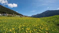 A walk from farm to farm in Colle/Val Casies