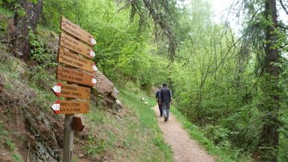 Archaeological hike A10