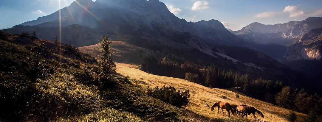 Dinaric Alps