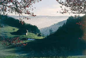 Hornberg/Lauterbach - Zum Turm