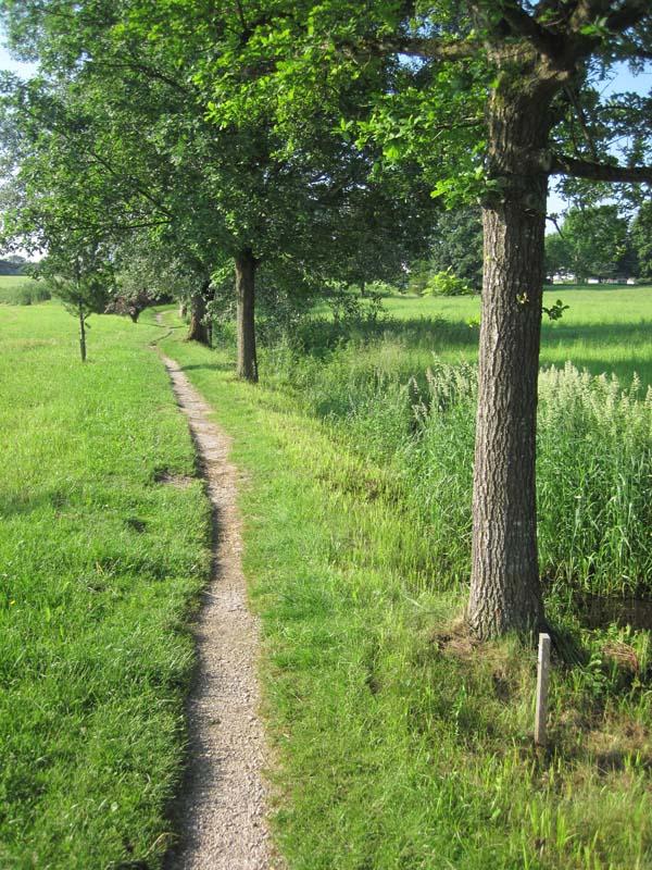 Naturlehrpfad am Schwarzbachmoos
