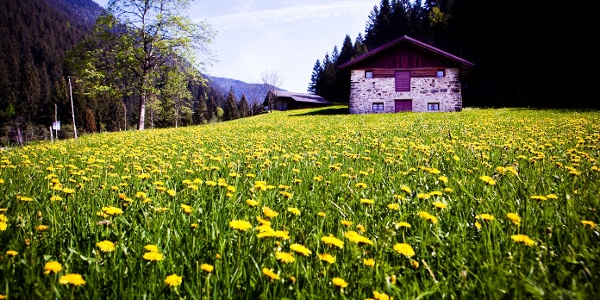 Baita Val Campelle - Foto Archivio Apt Valsugana
