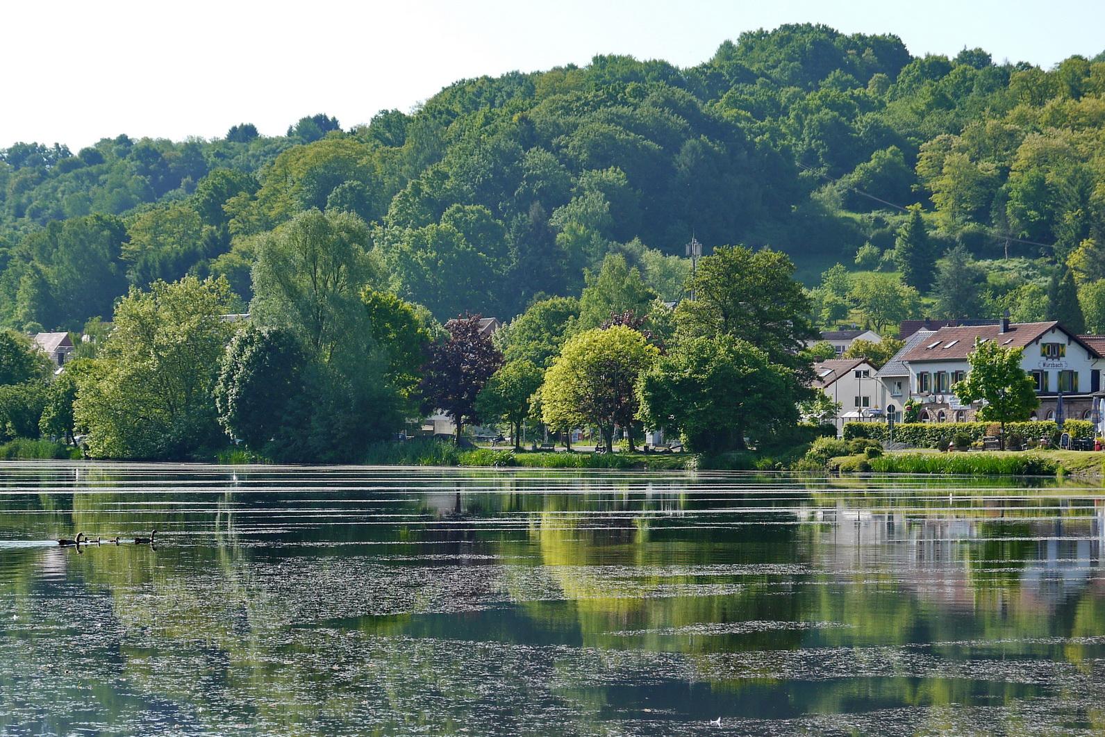 Würzbacher Weiher mit Annahof- ein Garten mit Geschichte