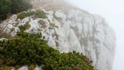 Ohne Nebel wäre die Aussicht sicherlich grandios gewesen ;-)