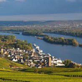 Blick auf Rüdesheim