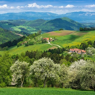 Frühling in Thomasberg