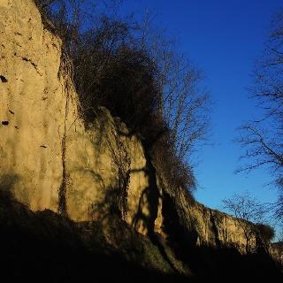 Naturdenkmal Hohlweg vor Steinaweg