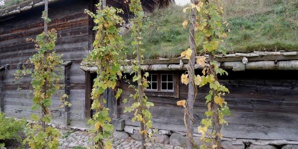 Altes Bauernhaus im Museum Kulturen i Lund