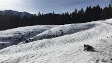 Längental, Längenberg-Alm (1.244m) und Kirchsteinhütte