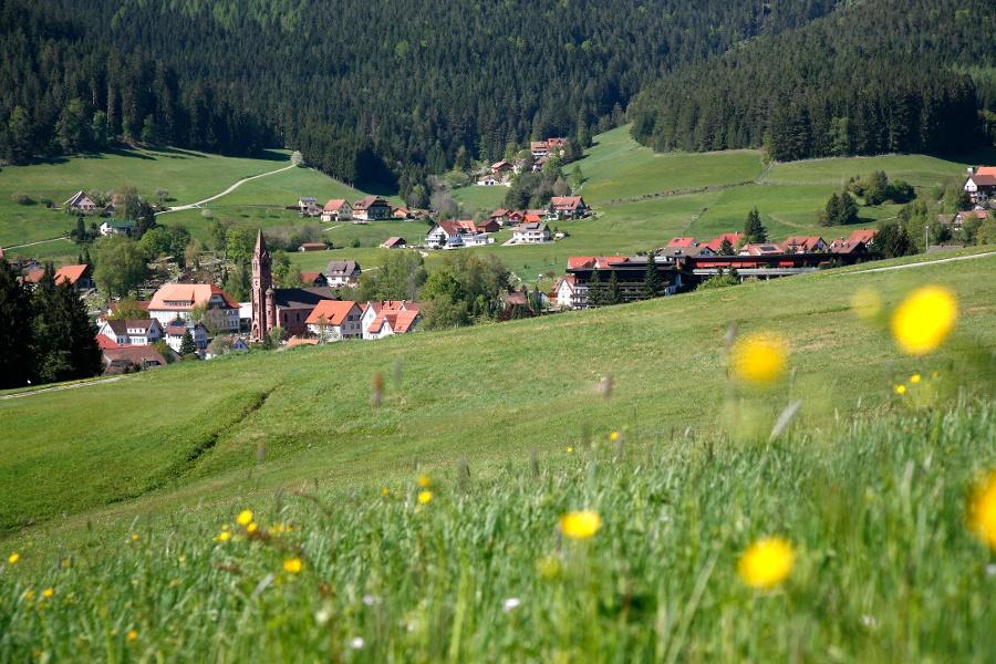 Erlebnispfad 3 - Dorf der Quellen und Parzellen
