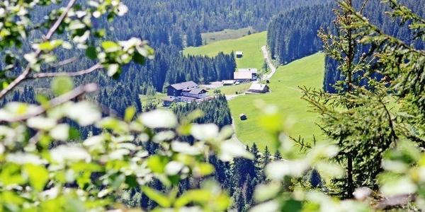 Alpengasthof Hörnlepass Sommer II