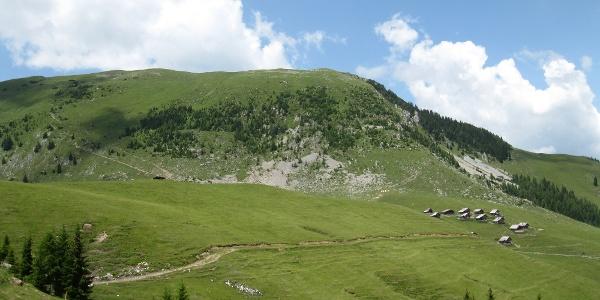Feistritzer Alm und  Oisternig, 2052 m