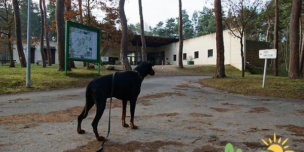 Am Bergbaumuseum Mechernich