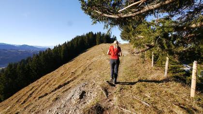 Wanderung auf der Salmaser Höhe
