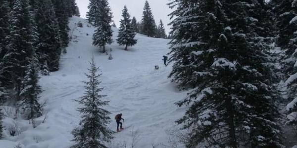 steiler Grabenanstieg zur Staffalm