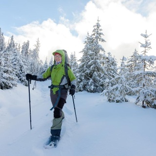 Auf dem Weg durch den verschneiten Wald