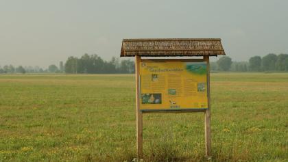 Info-Tafel in der Saalbach-Niederung