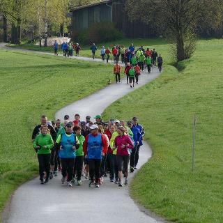 Laufgruppe 3, 11 km